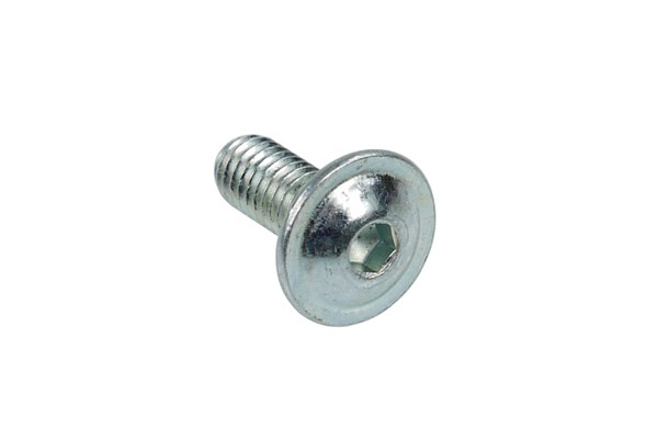 Screw ISO 7380 M4 x 10 hexagonal fillister head
